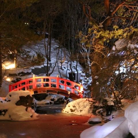 エルムガーデン「雪あかりのレストラン」に行ってきました